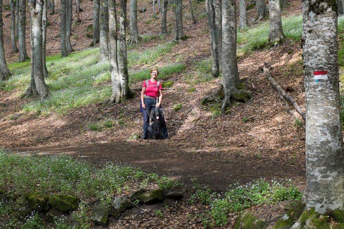 Sissel og Geco i skogen