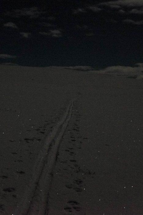 20170310-dscf3124-skispor